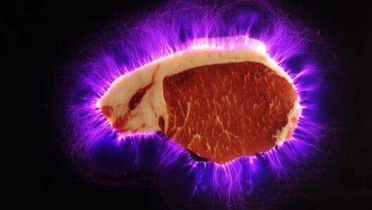 電気で肉が美味くなる事実! 電気肉の正体はキルリアン写真だ!