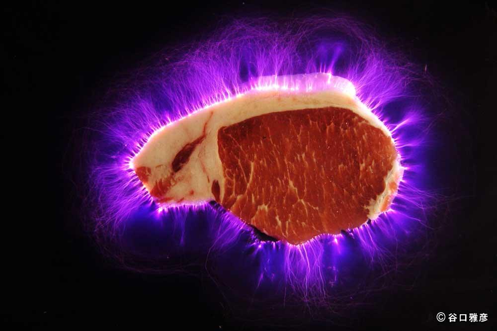 ↑高電圧で光る肉、それが『電気肉』だ