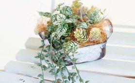 【Seria】100均のフェイクグリーンでお手入れ楽々な寄せ植えを作ろう!