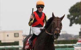 「この地で死ぬまで馬にかかわりたい」外国人騎手、M・デムーロの強さとは
