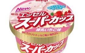【本日発売】想像とまったく同じ味!? 定番アイスの新作は抜群の安定感でローテ入り確実!