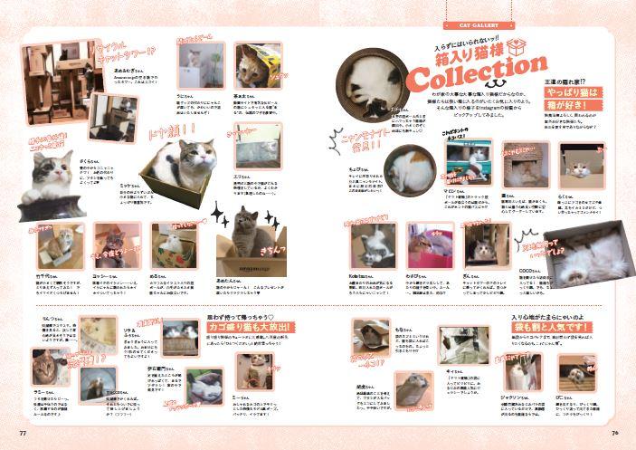 箱入り猫さまコレクションやファッションスにゃップなど、かわいいおもしろ猫さま写真がズラリ