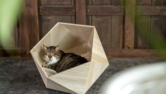 猫の寝ている姿をアートにしてしまうペットハウス「PLAINハウスシリーズ」