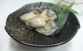 長期熟成の牡蠣の塩辛は大粒で旨みがたっぷり!!【絶品おつまみお取り寄せガイド】