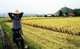 「残念な場所」がなぜ「化けた」のか? 会津の日本酒がウマイ本当の理由【後編】