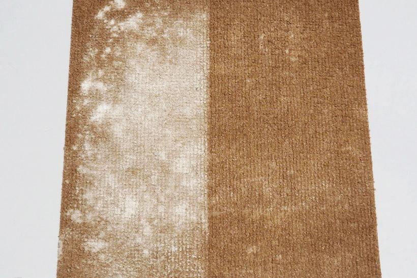↑小麦粉を巻いたカーペットの半分に巻いて、手で強くこすりつけました。半分だけソフトローラークリーナーヘッドで掃除したところ……一度しか通過していないのに、ほとんどの粉が消えています。まだ少し粉が残っていますが、3往復でほぼ見えなくなりました