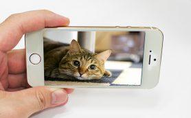 【いまさら聞けない】iPhoneに自分で撮った動画を取り込んで楽しもう!