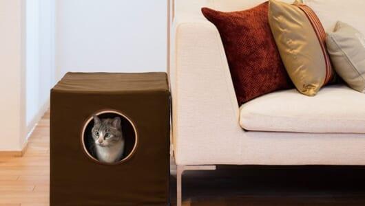 オシャレでお掃除もラク! 猫ちゃんが安心して使える「進化系トイレ」6選