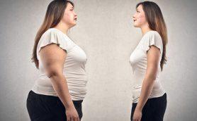 やせないのは肥満遺伝子が原因!? 「失敗するダイエット」が遺伝子解析でわかる時代に!