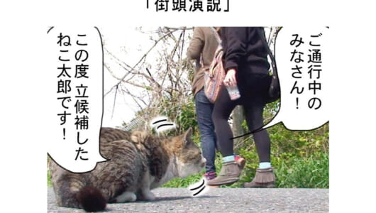連載マンガ「田代島便り 出張版」 第2回「街頭演説」