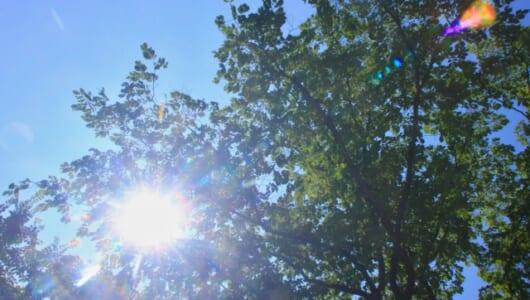 約90%の人が就寝時にエアコンを使用! 真夏の熱帯夜のエアコン利用状況を徹底調査