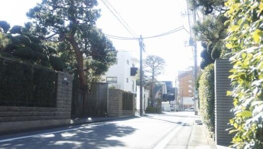 東京都杉並区と横浜市青葉区、そこに住む「意識高い病」にかかった人々の共通点