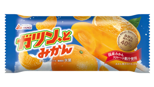 果汁・果肉が10%増! 新たに国産ストレート果汁を使用した「ガツン、とみかん(シングル)」が本日より発売開始