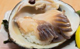 """""""殻付き""""メニューの圧倒的鮮度に驚愕! 貝類に絶対的自信をもつ池袋の「廻し鮨 大漁」【回転寿司の名店】"""