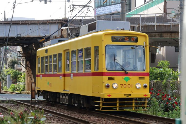 ↑都電車両のなかでも最古参となった7000形。都電の古い塗装を再現した車両も走る