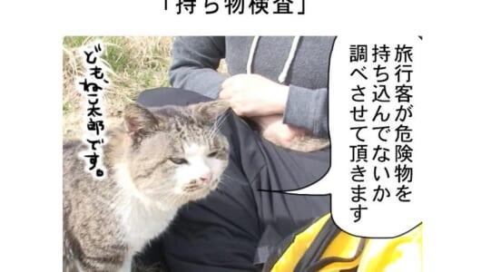 連載マンガ「田代島便り 出張版」 第4回「持ち物検査」