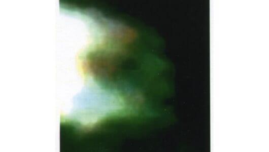夜な夜な出現する「幽霊レプティリアン」の謎