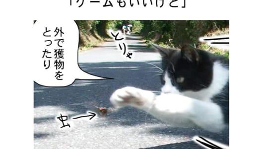 連載マンガ「田代島便り 出張版」 第5回「ゲームもいいけど」