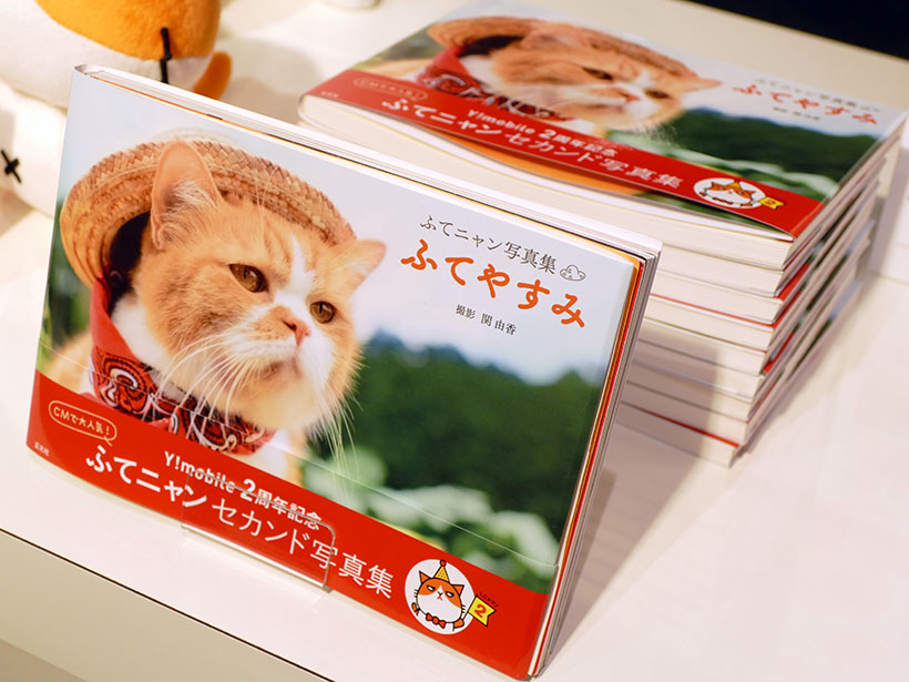 ↑ふてニャンのセカンド写真集「ふてニャン写真集 ふてやすみ」が8月19日より全国の書店で発売される予定。価格は1404円