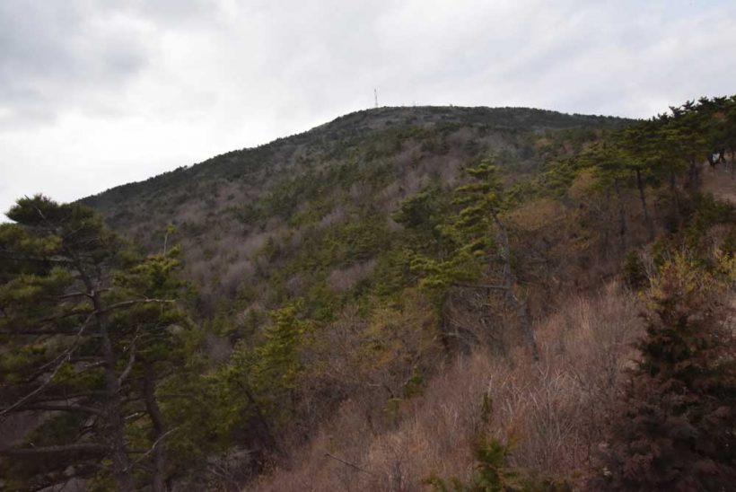 ↑釜山の海雲台に位置する萇山
