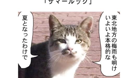 連載マンガ「田代島便り 出張版」 第6回「サマールック」