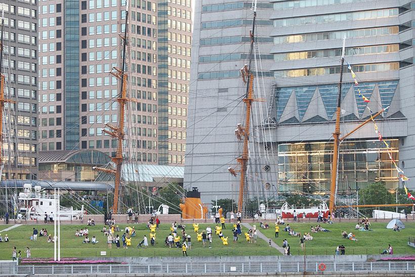 ↑日本丸メモリアルパークの芝生の斜面にもピカチュウが大量発生チュウ!