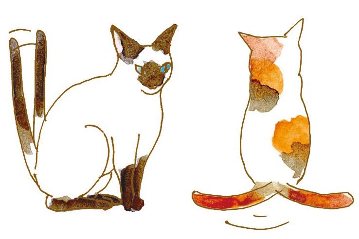 猫の気持ちは「しっぽ&鳴き声」でわかる!! しっぽを立てて振るのは「バッカじゃにゃあ?」 | GetNavi web ゲットナビ