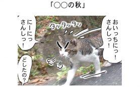 連載マンガ「田代島便り 出張版」 第12回「○○の秋」
