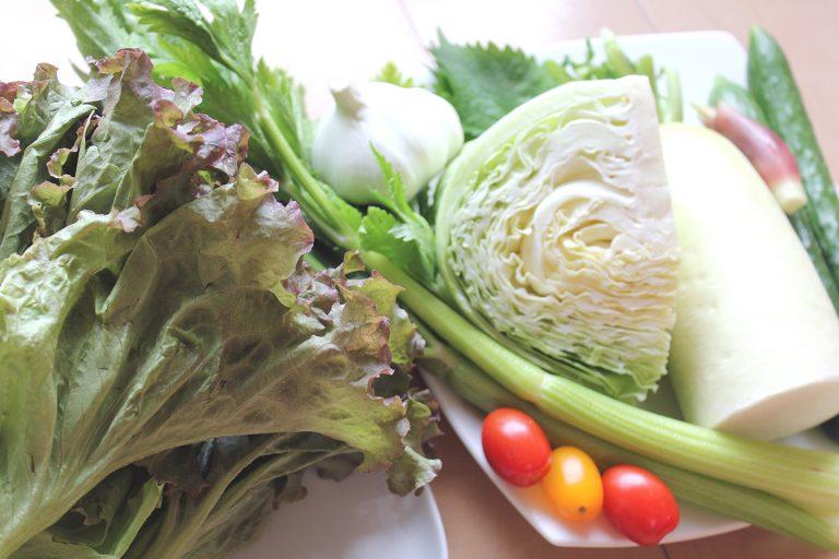 ↑せん切り野菜はきゅうり、セロリ、キャベツ、大根など。みょうがやシソをアクセントにして、大きくちぎったサニーレタスに入れる野菜たっぷりの野菜巻
