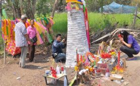 【ムー出張コラム】当選番号が浮かぶ!? タイ「宝くじの木」を日本のナンバーズでトライ!