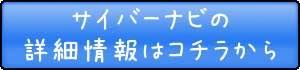 banner_pioneerbotom