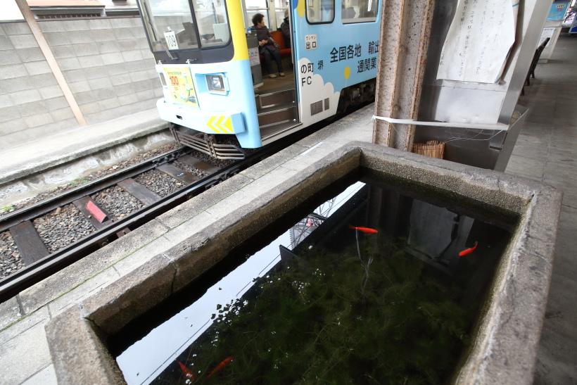 ↑廃止された住吉公園駅のホームには水槽があり、金魚が飼われていた。なんとも不思議な光景だった。