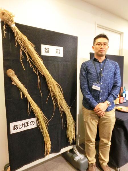 ↑背丈が高い雄町(右)は背丈が160cm以上になることも。ゆえに台風の多い地域では栽培が難しいのです