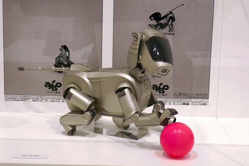 ↑愛玩ロボットとして今もなお愛好家が少なくない「AIBO(アイボ)」の展示では、開発中に生まれた試作機も見ることができる