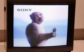ウォークマン・MD・アイボ……ソニーの歴史的アイテムが一同に会す「It's a Sony展」