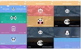 iPhoneのストレージを大掃除!写真整理に役立つ画像自動分別アプリ「PhotoPanda」