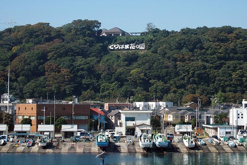 ↑久里浜港からみた「くりはま花の国」。近くにありそうですが、山の上なので、遠そうです