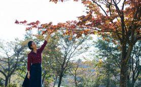 片道2時間半のバカンス! 紅葉も秋の旬グルメも楽しめる赤城山ドライブ