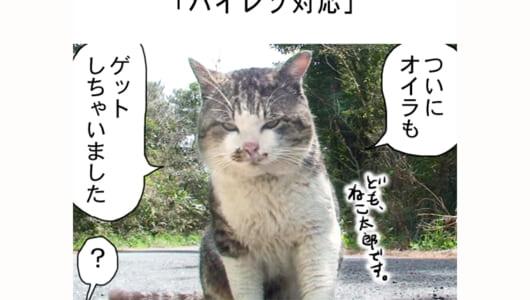 連載マンガ「田代島便り 出張版」 第20回「ハイレゾ対応」
