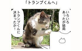 連載マンガ「田代島便り 出張版」 第21回「トランプくんへ」