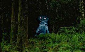 【ムーUMA情報】水辺での「ポケモンGO」でリアル「カエル男」に遭遇、米カップルが撮影に成功!
