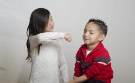 「お姉さんがいる男子」最強説――モテたかったら少女マンガを読め!