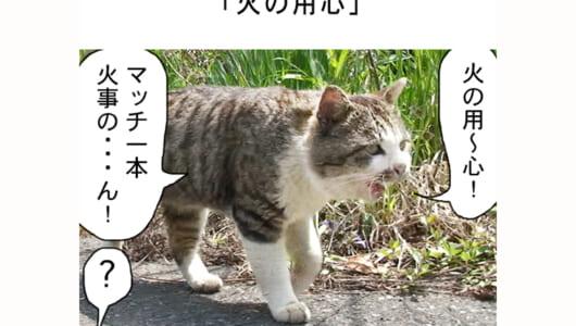 連載マンガ「田代島便り 出張版」 第23回「火の用心」
