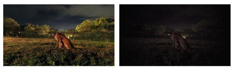 ↑撮影イメージ(左がFR110Hで撮影したもの、右が従来モデルで撮影したもの)