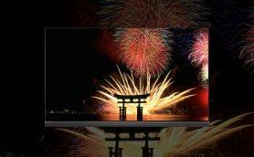 LGの有機ELテレビで巡る日本の「色旅」――未来永劫に残したい「黒」の絶景ベストセレクション