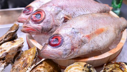 【中目黒高架下の絶品店】のどぐろと牡蠣が自慢の「ノドグロヤ カキエモン」で贅沢な飲みニケーションを!