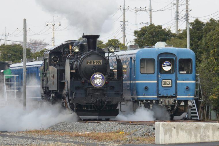 ↑C11形蒸気機関車と並ぶのは14系座席車。JR四国から譲渡車両で、改装され使われる予定だ