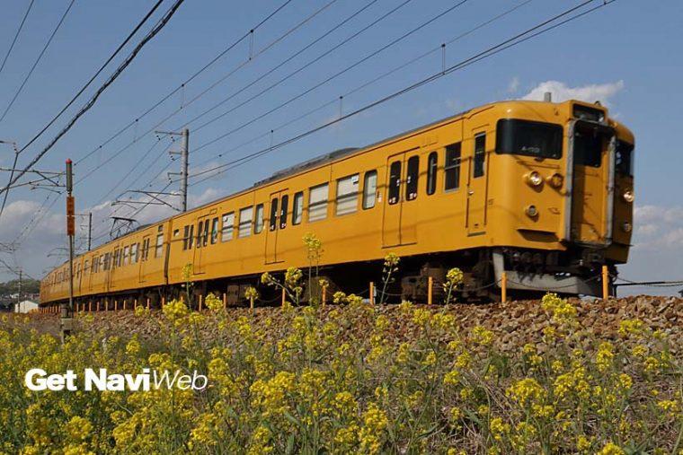 ↑JR西日本の115系は多くが健在。黄色一色は岡山電車区の115系で、瀬戸大橋線や伯備線を走る