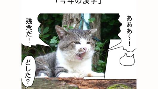 連載マンガ「田代島便り 出張版」 第25回「今年の漢字」
