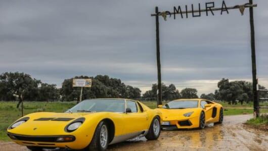 ランボルギーニ・ミウラが「ミウラ牧場」へ! ルーツへの訪問で50周年記念イヤーを締めくくる